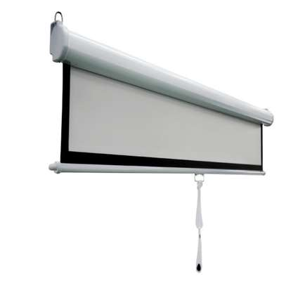 Manual Projector Screen - 150 Inches image 12