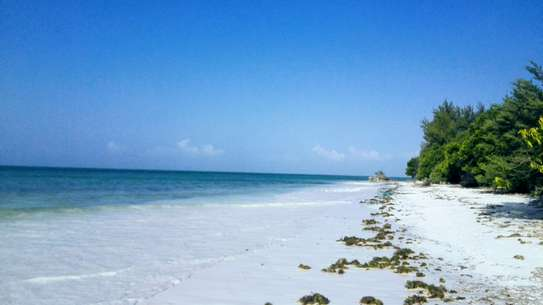 MICHAMVI SEAFRONT LAND FOR SALE IN ZANZIBAR ISLAND