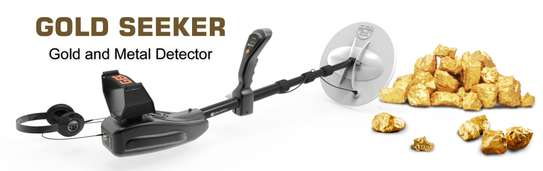 GOLD SEEKER DEVICE 1 SYSTEM image 2
