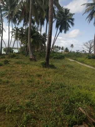 40,400 sqm SEAFRONT LAND FOR SALE-ZANZIBAR ISLAND image 2