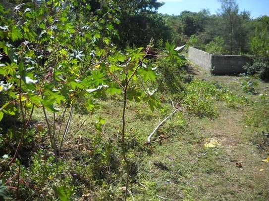 Second raw Plot of land for  Sale Zanzibar, Tanzania image 3