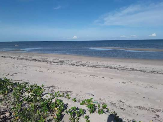 OCEANFRONT LAND FOR SALE IN TANGA CITY image 9