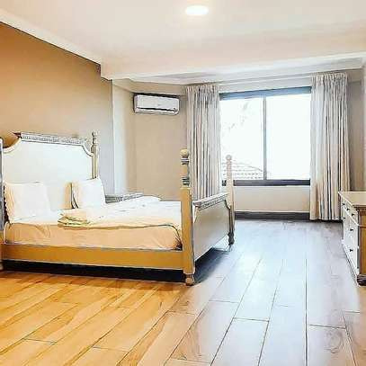 1,2 and 3bhk luxurious apart fully furnished for rent image 13