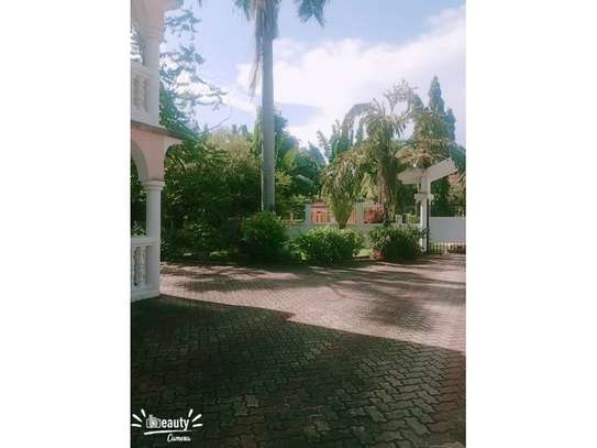 5bed house at mikocheni a $1500pm image 4