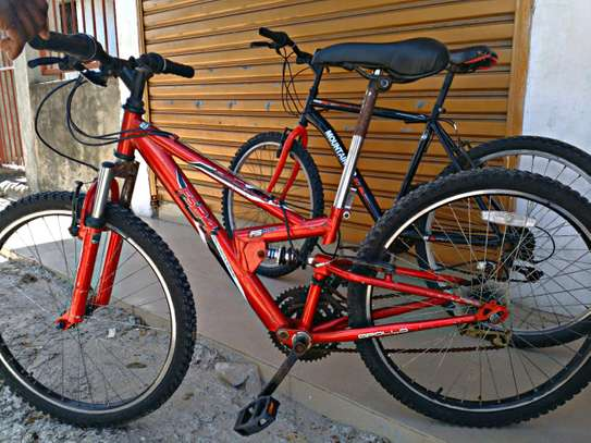 Mountain bike (Apollo FS-24)