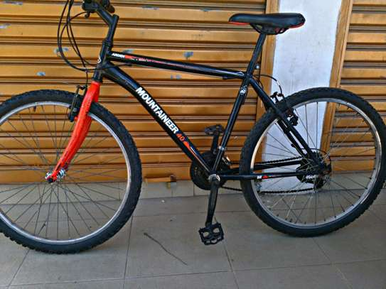Mountain bike (Arden Mountaineer 40)