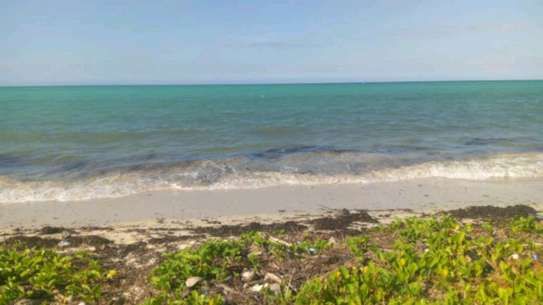 8.5 acres Beach plot in Kilwa masoko,Bagwe area. image 2
