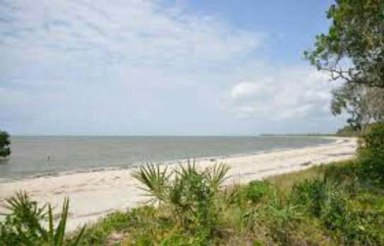 3 Acres Beach Plot  for Sale, Pangani - Tanga image 2