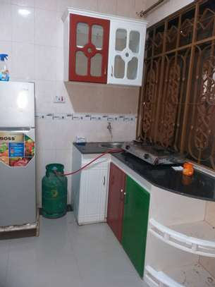 FULL FURNISHED HOUSE FOR RENT KISASA DODOMA image 5
