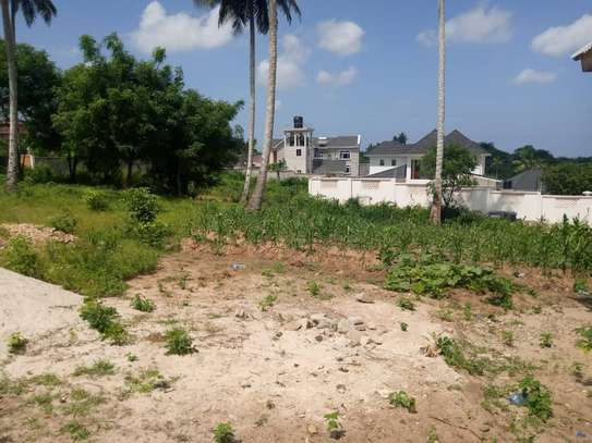 Plot for sale in Goba 500 meters from Goba center image 1