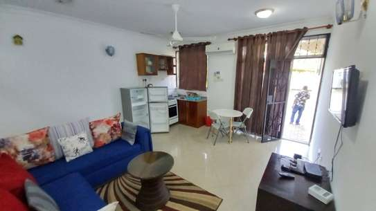 NICE 1BHK APARTMENT FULLY FURNISHED FOR RENT AT MIKOCHENI image 3