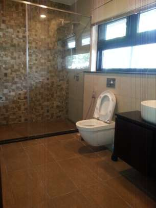 5 Bedrooms Home For Rent In Oysterbay image 6