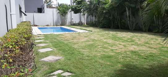 4 Bedrooms Compound House With Private Pool For Rent in Oysterbay image 15