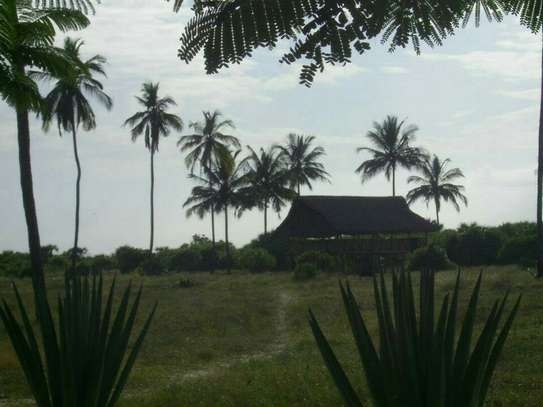 3 Acres Beach Plot  for Sale, Pangani - Tanga image 5