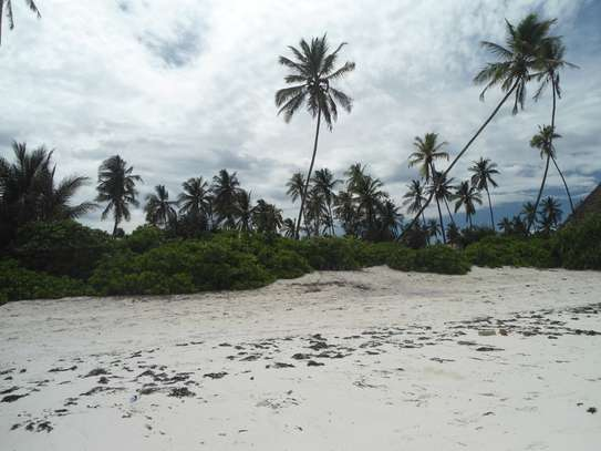 5,668 sqm OCEANFRONT LAND AT MATEMWE VILLAGE-ZANZIBAR ISLAND image 4