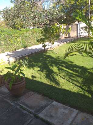 2 Bed room house for rent in Masaki image 3