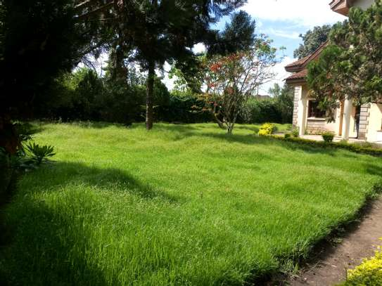 NICE 5BEDROOMS HOUSE IN NJIRO-PPF. image 6
