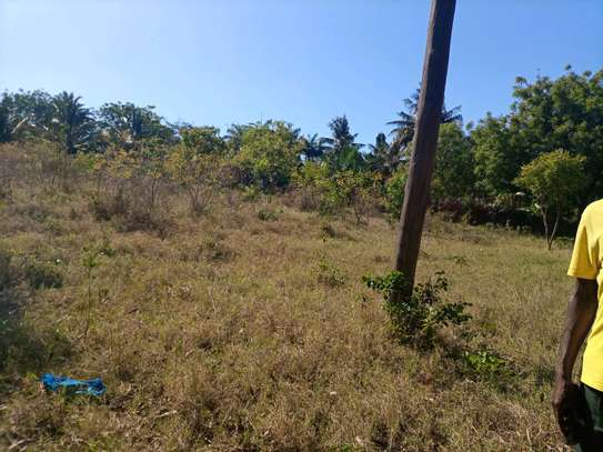 One acre plot for sale...Sala sala image 1