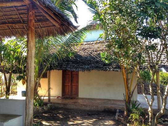 Cozy Property in Jambiani image 6