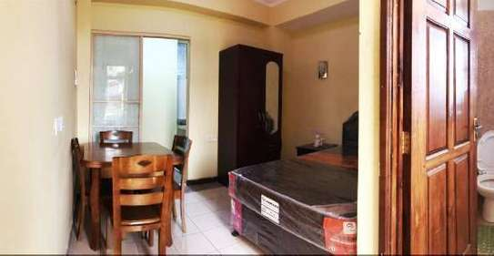 1 Bdrm Studio Flat Furnished in Kariakoo
