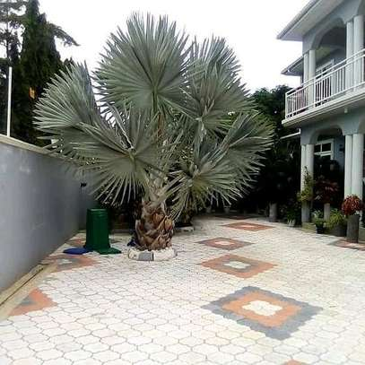 HOUSE FOR SALE AT MBEZI BEACH....a 4bedrooms with a servant cotter image 4