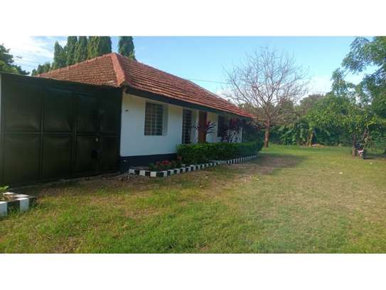 2bed house at oyster in the compound  near KCB BANK tsh 800,000 image 2