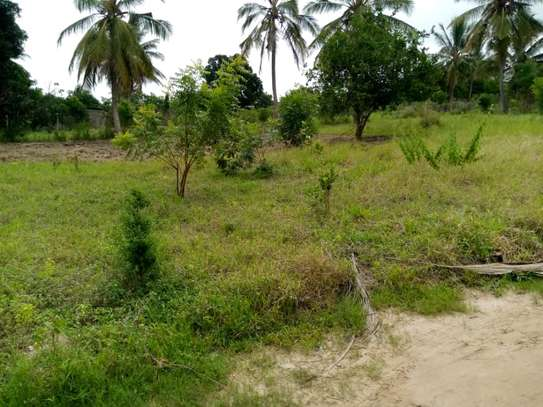 Plot for sale Mivumoni Madale-1.5 km from main road image 4