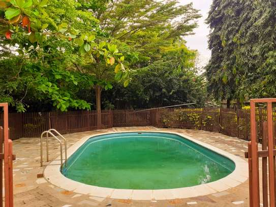 4 Bedroom Standalone House In Masaki With A Mature Garden image 4