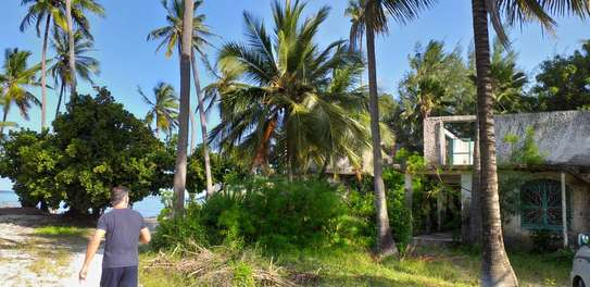 Land for sell image 3