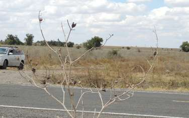 40469 m² land for sale in Isinya