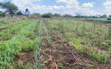 30 ac land for sale in Namanga