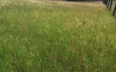 1012 m² land for sale in Thika Road