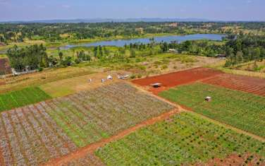 Land for sale in Thika Road