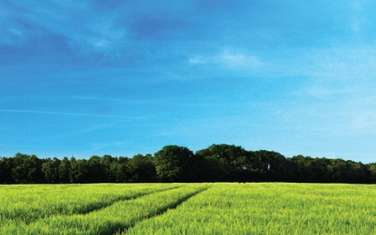8094 m² land for sale in Pipeline