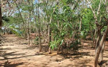 8094 m² residential land for sale in Bofa