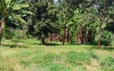4047 m² land for sale in Muthaiga Area
