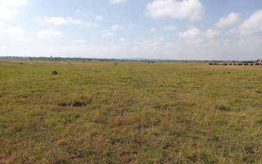 1600 m² commercial land for sale in Juja