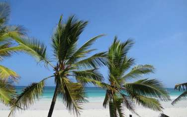 263055 m² commercial land for sale in Diani