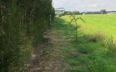1012 m² residential land for sale in Nanyuki