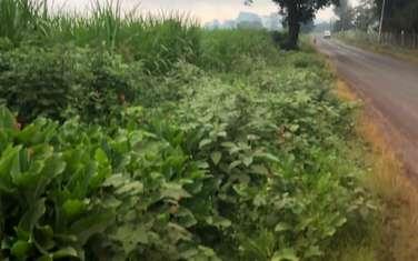 4.7 ac land for sale in Tigoni