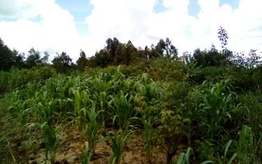 0.75 ac residential land for sale in Wangige
