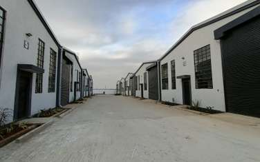Commercial property for rent in Mlolongo