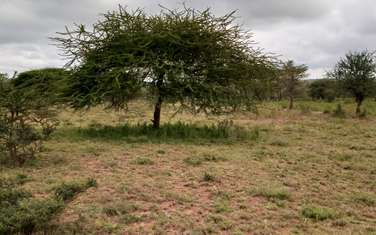 10 ac land for sale in the rest of Kajiado South