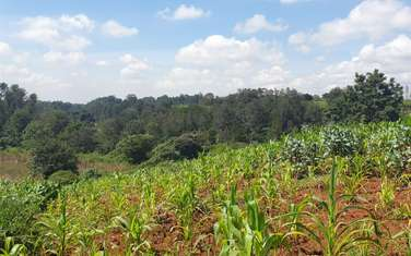 64752 m² residential land for sale in Spring Valley