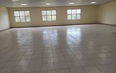 446 m² commercial property for rent in Cbd