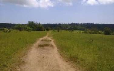 4047 m² land for sale in Diani