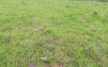 2023 m² residential land for sale in Karen