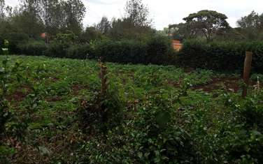 10000000 m² residential land for sale in Ngong