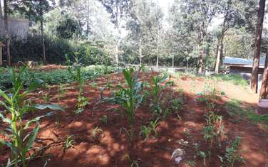 0.25 ac land for sale in Ngong