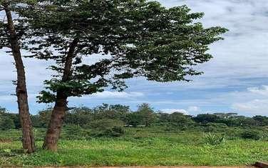 2024 m² land for sale in Nyari
